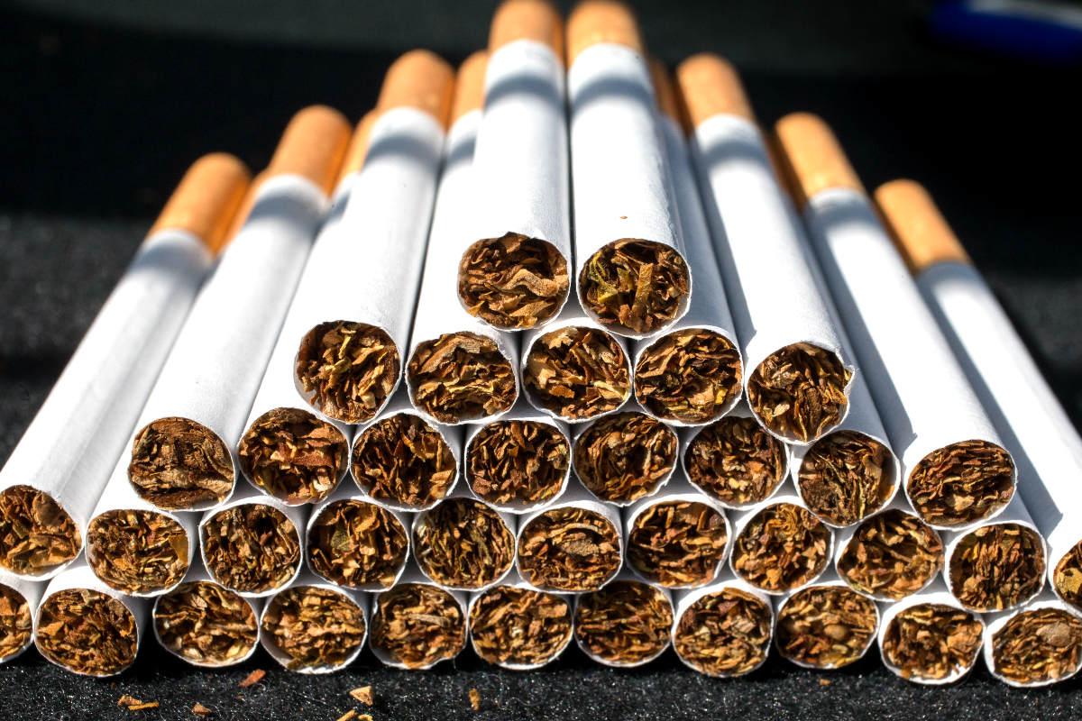 tobacco ile ilgili görsel sonucu